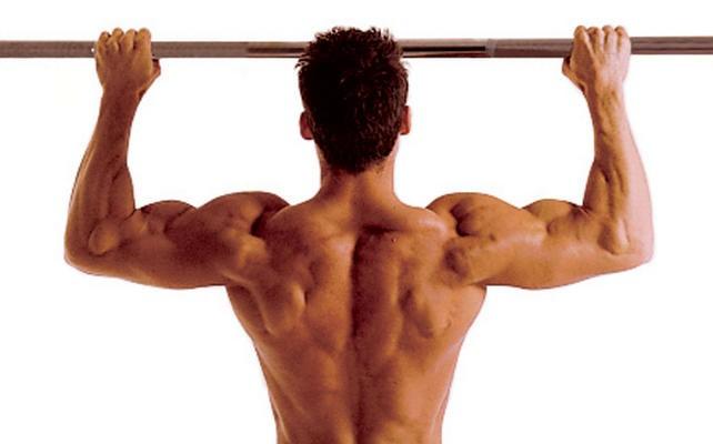 Упражнения на верхнюю часть тела