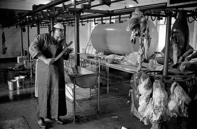 Раздельная обработка мясных и молочных продуктов