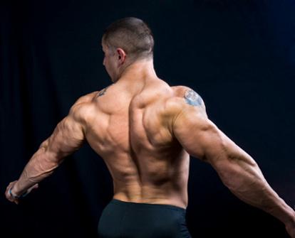 Упражнения на спину на тренажере «БИЗОН—1М»
