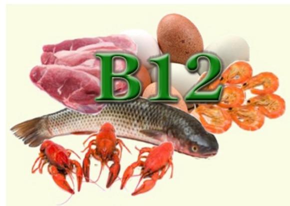 Витамин В12 для чего нужен