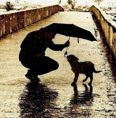 Что такое сострадательное мышление