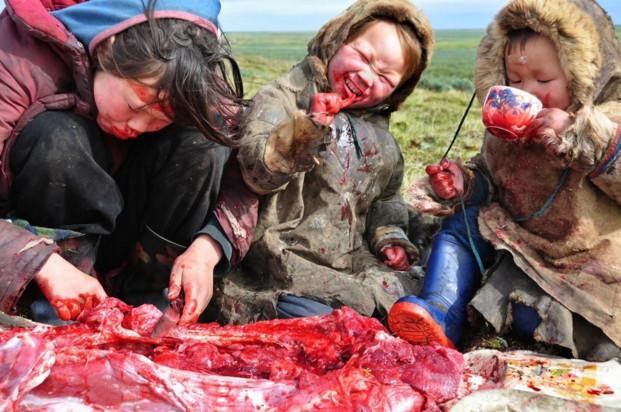 диета эскимосов