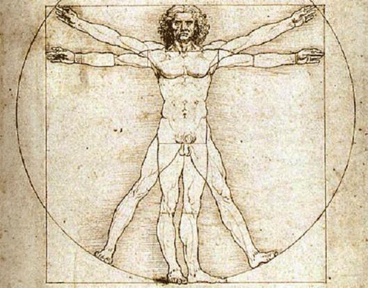 совершенности устройства организма человека,