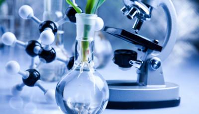 Витамины Биохимия