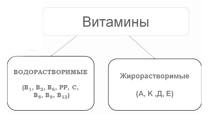 витамины классификация
