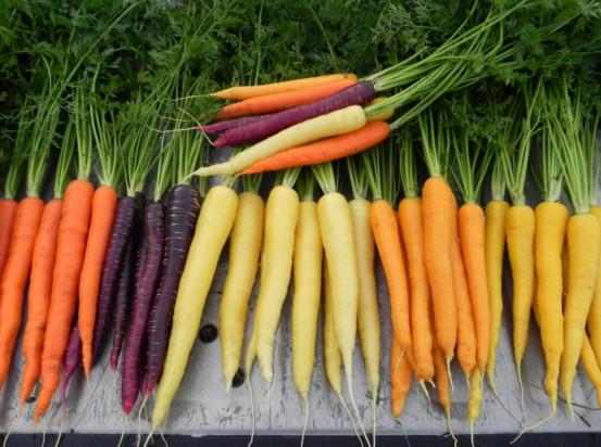 Какие витамины в моркови