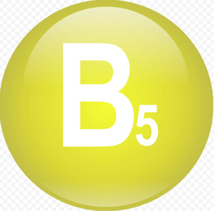 Функции витамин B5