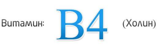 витамин B4 для чего нужен организму