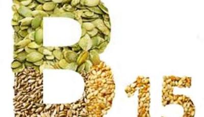 Витамин в15 панагамовая кислота