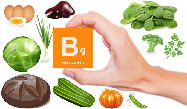 где содержится витамин В9