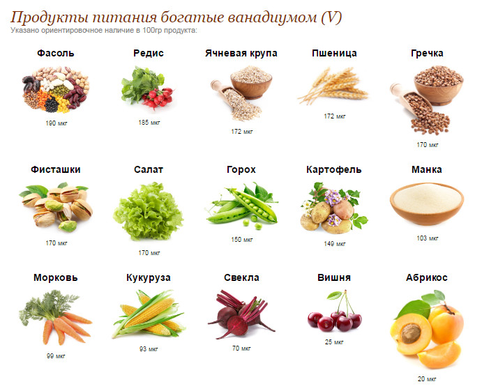 ванадий продукты питания