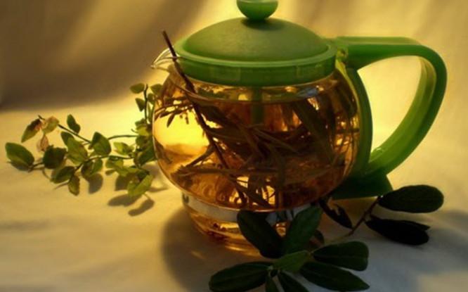 чай и железо в организме